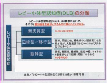 DLBの組織学的分類.jpg